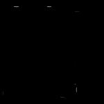 Qwan Ki Do - Grupa adulti
